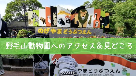 野毛山動物園へのバスの時刻表は?アクセス・営業時間・見どころを紹介